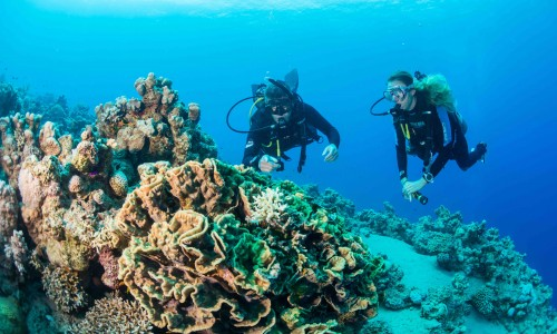 Scuba diving… sport extrem, terapie si team building